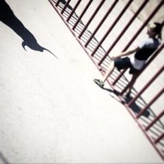 Bull shadow #fiestasdepueblo #barajasdemelo #torosdepueblo
