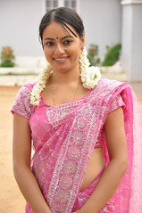 South actress MADHUCHANDAPhotos Set-3-HOT IN TRADITIONAL DRESS (50)