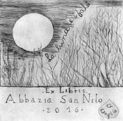 GOGLIA GIUSEPPINA_Opera 1_la luna e i falò