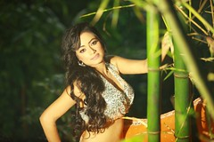 South actress MADHUCHANDAPhotos Set-3-HOT IN TRADITIONAL DRESS (45)