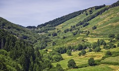 Valley in the French Cevennes