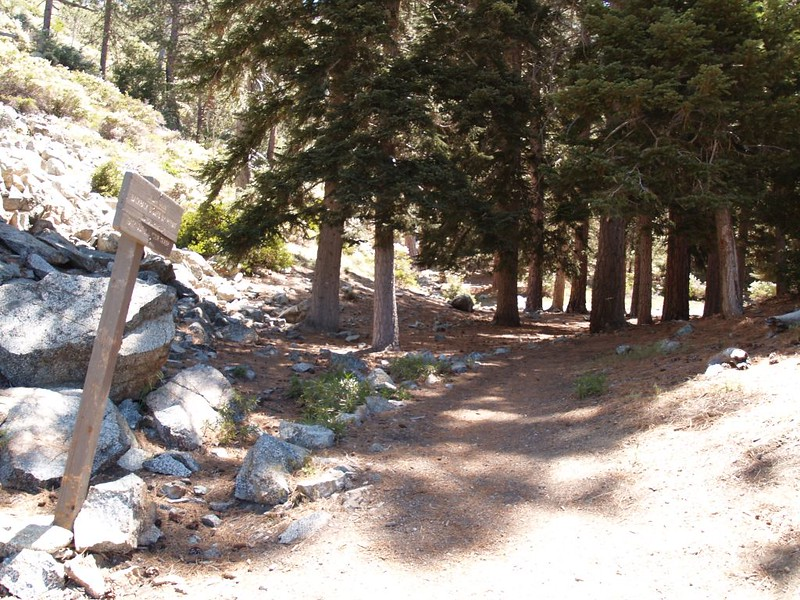 The trail entrance to Cedar Glen Campsite on the Chapman Trail