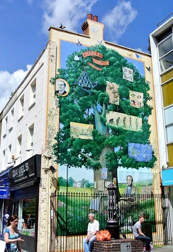 Charles Darwin Mural - 17th June 2012 - Day 18