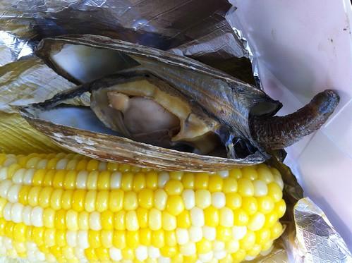 "corn & ""steamer"""