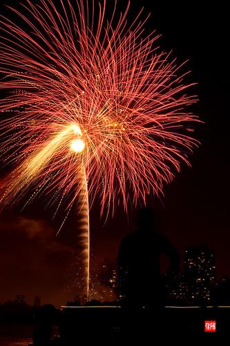 D80 CHI Fireworks 2012_07-04 17B
