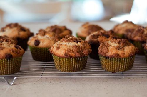 206/366 - Graham Cracker Muffins by aithom2