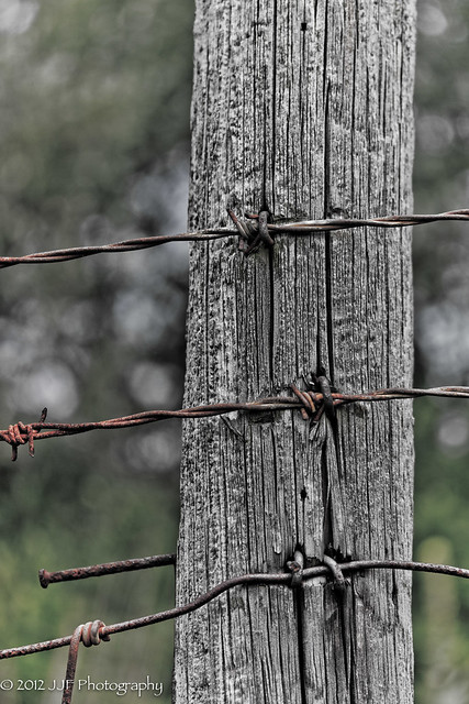 2012_Aug_03_Barb Wire_024