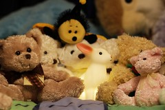 Rabbit and Teddy Bears