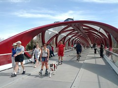 Calgary Peace Bridge by Santiago Calatrava - pix 03
