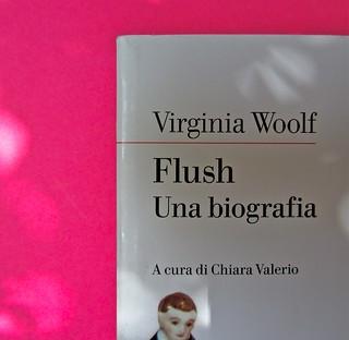 Virginia Woolf, Flush. Una biografia. A cura di Chiara Valerio; nottetempo, Roma 2012. progetto grafico di Dario e Fabio Zannier. copertina (part.), 5