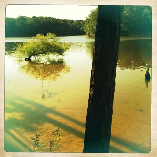 Lake Jordan, NC