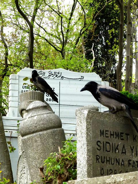 Istanbul - avril 2012 - jour 4 - 112 - Eyüp Mezarlığı