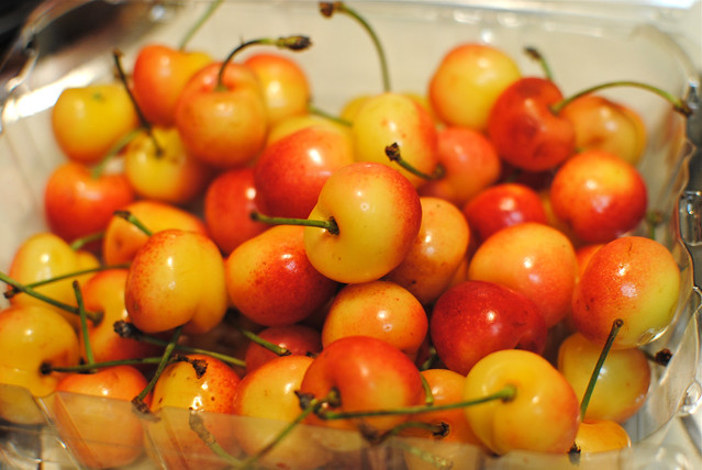 Rainier Cherry Season