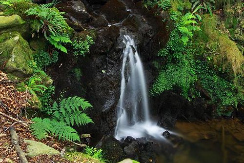 Cascada #Photography #Flickr #Foto  4