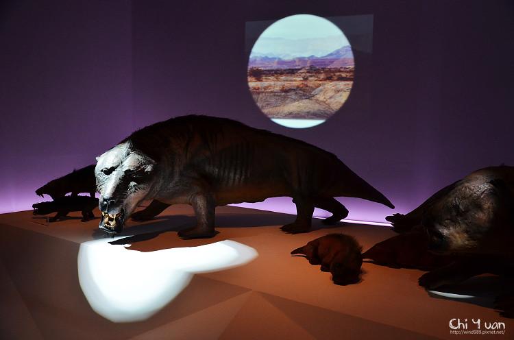 地球最古老的恐龍展11.jpg