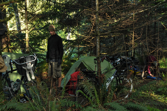 Wild camp near Port Orford