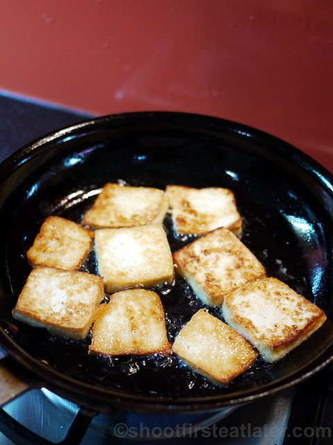 panfried tofu with spicy sauce -005