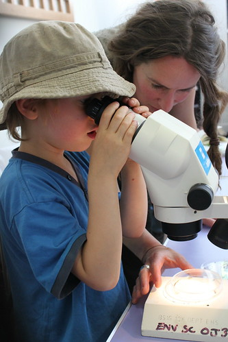Five-year-old Oaken mastering the microscope