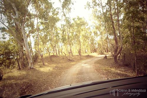 Nine West Ville Rough Road