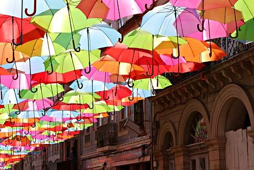 umbrellas & sun