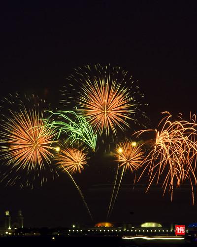 D80 CHI Fireworks 2012_07-04 04B