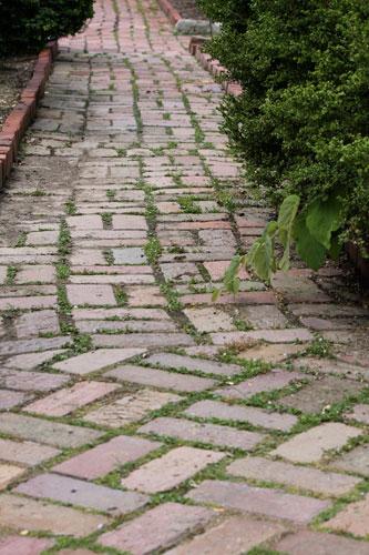 Garden Path: Bishop's Garden, National Cathedral: Washington DC
