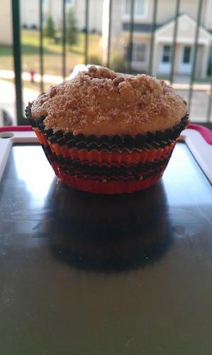 241/366 [2012] - Muffin
