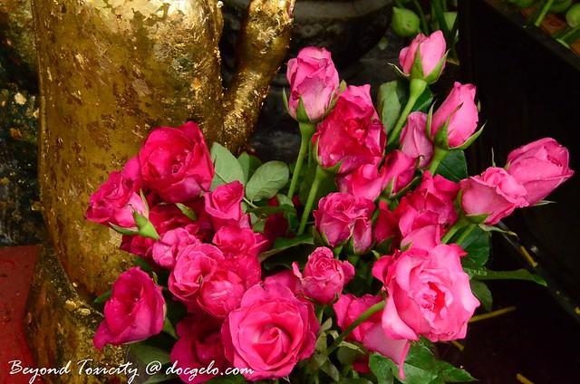 roses, bangkok thailand