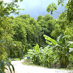 Lucia en el Norte de Tailandia, Viajefilos 143