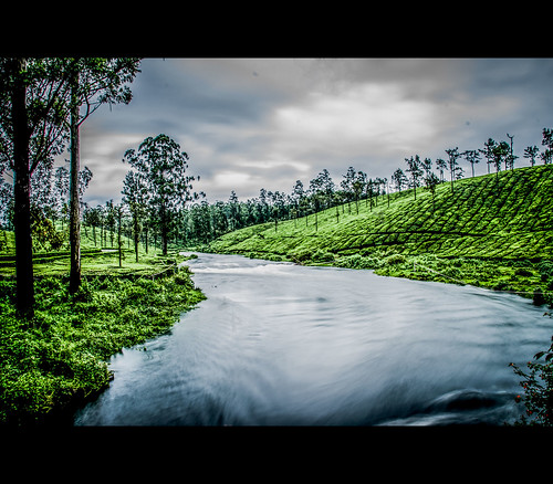 Pebble river, Valparai by Rajanna @ Rajanna Photography