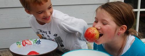 bob apples 2 (1280x498)