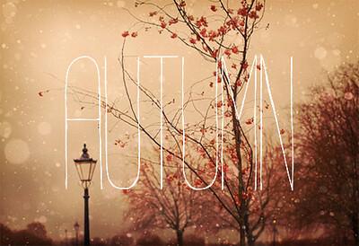 Afbeeldingsresultaat voor love autumn