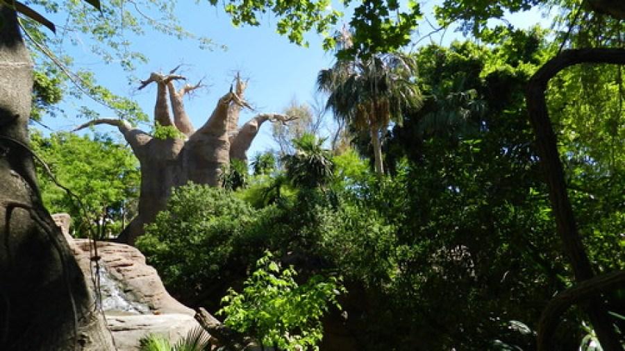 Bioparc en Fuengirola Málaga paisajes entorno 11