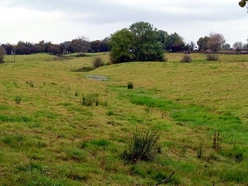 The Vallum west of the plantation