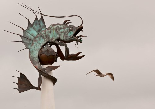 Mythical creature and gull - patience, is an essential skill for creative photography.