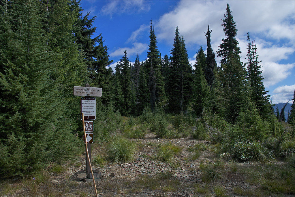 Trail head for USFS trail 541