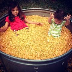 Enjoying the corn