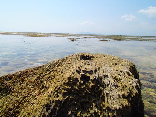 Pantai Plengkung - Karang