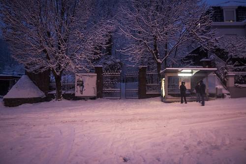 Waiting in Vain (Grivegnée, Belgique) - Photo : Gilderic
