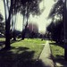 307. November Rain