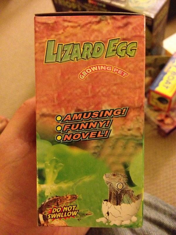 Lizard Egg