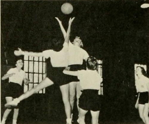 Meredith College Women's Basketball Players, 1954