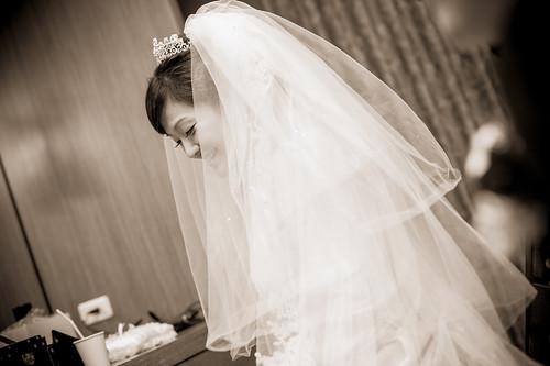 Flickr-0393