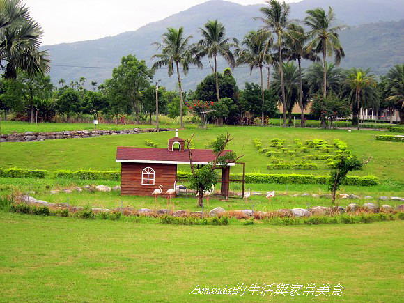 新光兆豐農場 (2)