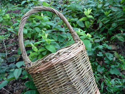 Handmade Willow Basket