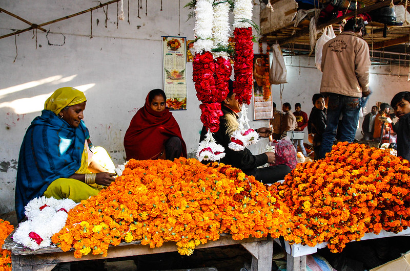 Mehrauli Flower Market_MG_2586November 19, 2012
