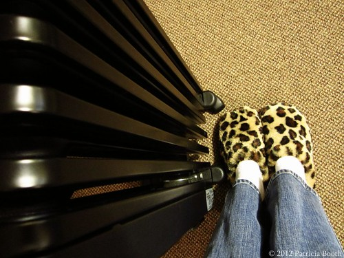 Day 317 Fuzzy Slippers by pixygiggles
