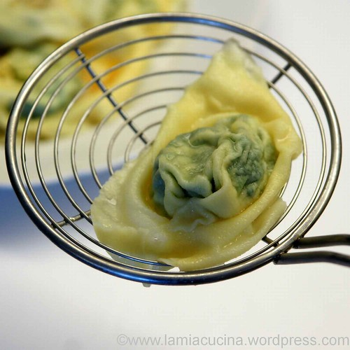Tortelloni ricotta e spinaci 2_2012 12 09_9027