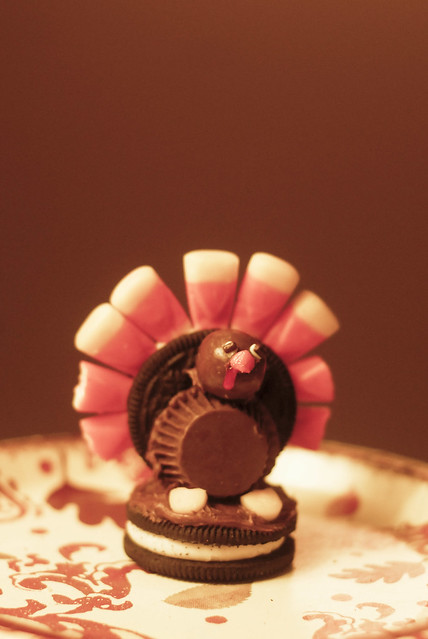 thanksgiving12-34