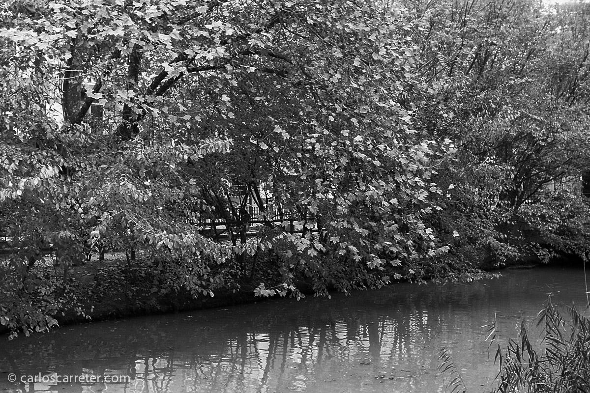 Paisaje urbano en el paseo del Canal